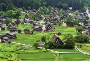 岐阜県の有名人聖火ランナーは誰?